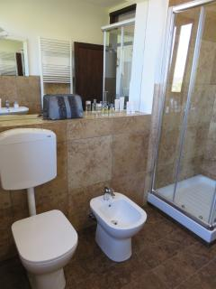 The large, modern bathroom.