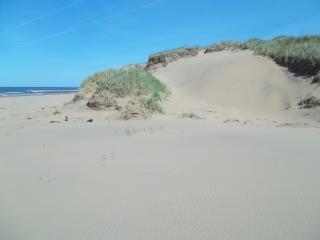 Sandcastles Beach House - Duneside: Stunning View on PEI's Best Beach