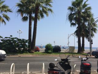 One bedroom apartment on the Nice sea front, Niza
