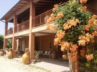 Casa di Checco - AllInclusive - Umbria - Perugia, Torgiano