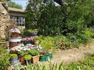 Idyllique appartement de 1 chambre avec jardin, Les Arcs sur Argens