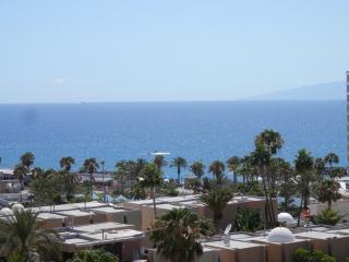 Estudio a 80m del mar en Aparthotel (B), Playa de las Americas