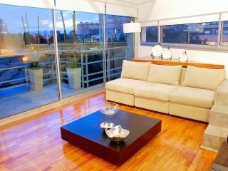 Stunning Duplex in Palermo , swimming pool and gym, Buenos Aires
