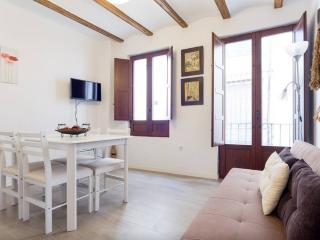 Apartamento centro de Granada