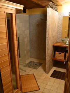 le sauna et sa douche
