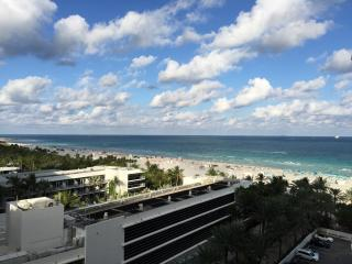 Beautiful Renovated apartment with balcony, South Miami