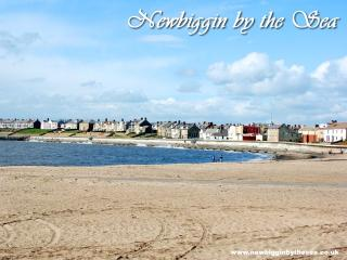 The Willows, Newbiggin-by-the-Sea