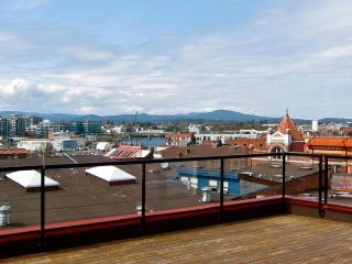 Rooftop patio with 360 views, tables & a bbq - for everyone to enjoy...