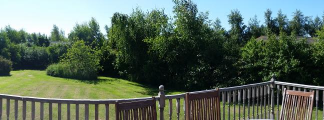 Panoramic view of the grounds beside the cabin.