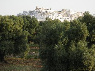 View of ancient Ostuni from the house