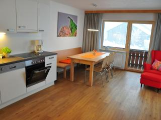 Vacation Apartment in Bezau - 936 sqft, up to three bedrooms (# 8833)