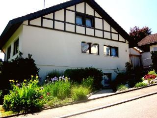 Vacation Apartment in Oehningen - 2 bedrooms, max. 4 People (# 8876), Ohningen