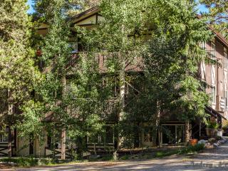Family Friendly Mountain Condo On Ground Floor, Breckenridge