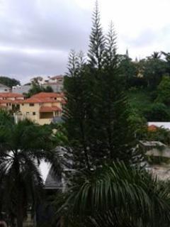Vista de la ventana de la sala