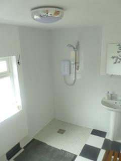 Open plan bathroom with walk in shower