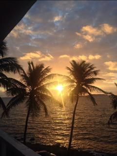 Oceanfront Paradise!, Fajardo