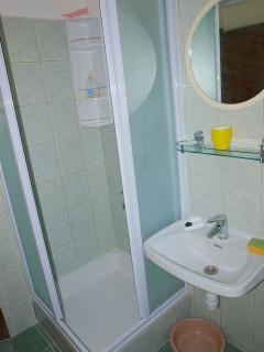 A1(4)-Donji: bathroom with toilet