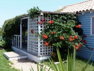 'Casita Azulita'  a short walk to the beach, El Palmar