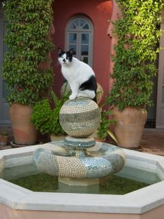 Geoffrey on the fountain.