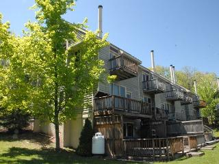 Charming & Cheerful 2 Bedroom mountainside townhome close to all activities!, McHenry