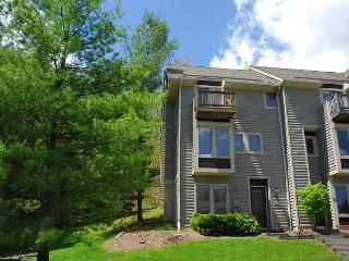 Incredible 3 Bedroom luxury townhome w/ Hot tub in the heart of DCL!, McHenry