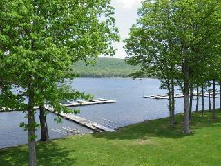 Townhome with grassy, level lakefront & dock slip close to DCL State Park!, Oakland
