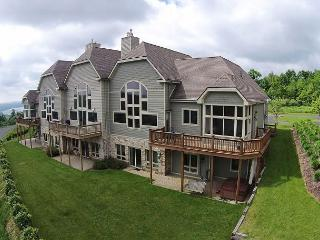 Lavish 5 bedroom townhome with spectacular lake views!, McHenry