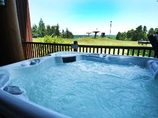 Magnificent Ski in/Ski out mountain home with all of the amenities!, McHenry