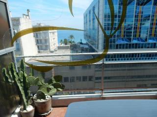 Appartement 2 pèces 55 m2, 7è étage immeuble, Niza