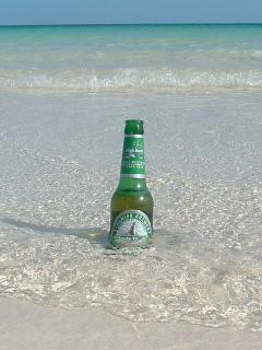 Enjoy a local beer
