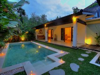 2 Bedroom Villa Close to BEACH, Seminyak