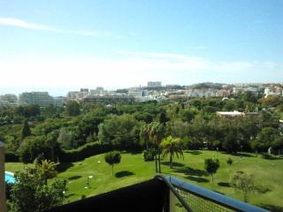 Estudio en Arroyo de la Miel.
