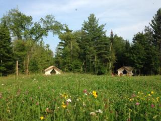 GLAMP SUZANNE ON PRETTY ADIRONDACK FARM, North River