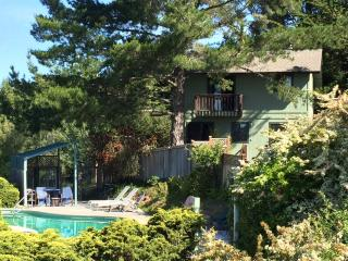 THE BIRDHOUSE RETREAT WITH POOL AND HOT TUB, Sebastopol