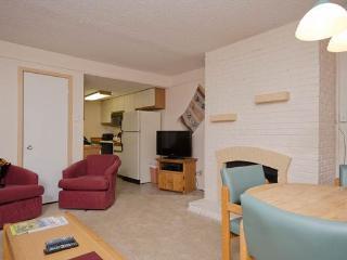 Ski Trail Condominiums - SK105, Steamboat Springs