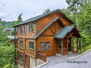 Papa Bear's Den is a quiet cabin just 2.5 miles from downtown Gatlinburg