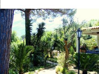 Ischia villa con grande giardino