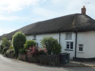 Beautiful 15th Century Devon Holiday Cottage