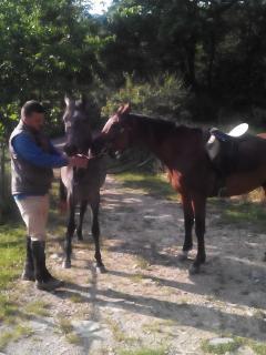 Amici a cavallo.