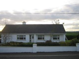Railway View, Loungnageer, Clongeen, Co.Wexford, Wellingtonbridge