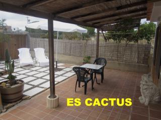 ES CACTUS   Singular  LOFT rural, Sant Francesc de Formentera
