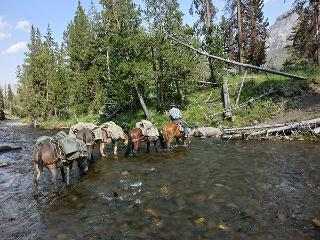 Horse Pack trips in Wyoming