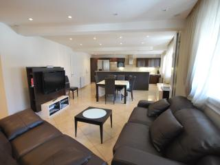 Modern 3 bedrooms apartment near the Carlton, Cannes