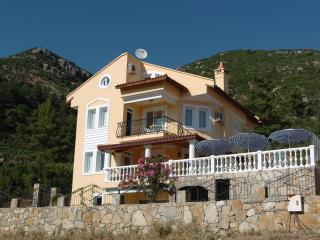 Large Child-Friendly Detached Holiday Villa