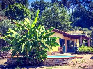 CottageTuscany-near Lucca with Pool only for you!!