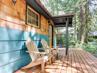 Modern, cozy, dog-friendly mountain retreat w/private hot tub & central location, Rhododendron