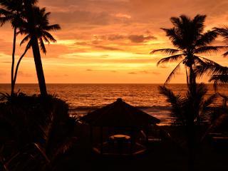 Max Wadiya  idyllic luxury villa on the beach