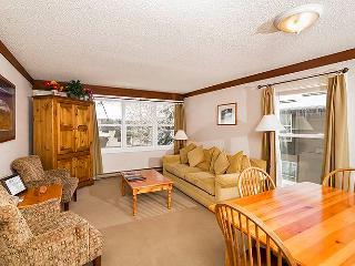 Affordable Town Of Telluride 1 Bedroom Condo - MI413