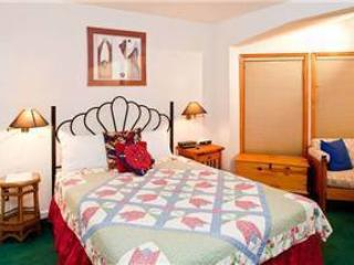 Lovely Town Of Telluride 1 Bedroom Condo - VA204