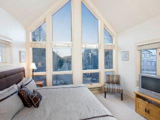 Affordably Priced Town Of Telluride 1 Bedroom Condo - VA308